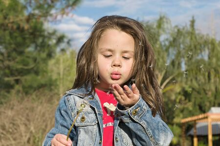 Little girl blowing dandelion blossom away photo