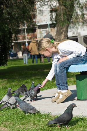 little girl feeding Pigeons in the park photo