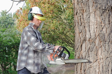 Man cutting log into sections with chainsaw photo