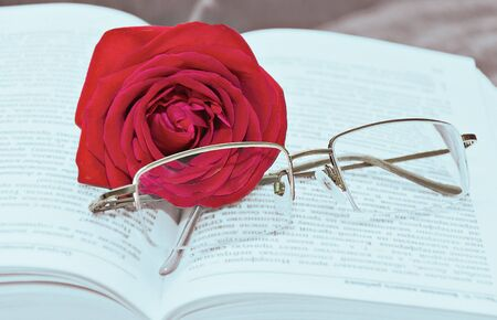 Reading glasses with pink in the book photo