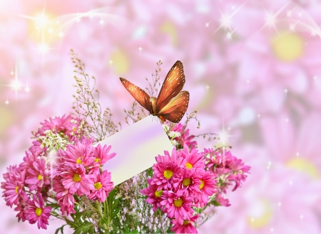 Exotic butterfly on pink gerbera blossom photo