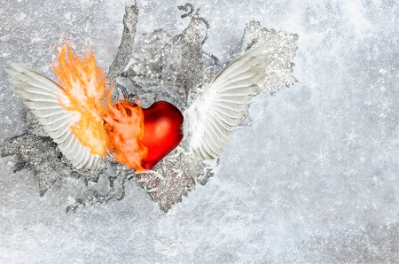 red heart with wings is burned in the ice plant Stock Photo