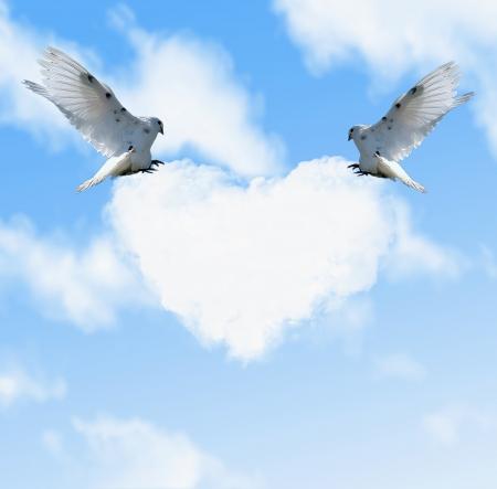 Twee duiven in de hemel en wolk met hart-vormige Stockfoto - 16173574