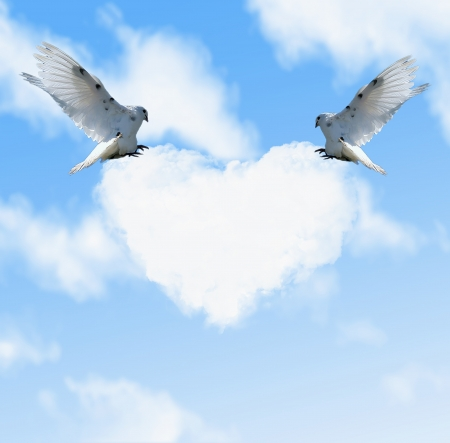 Two doves in the sky and cloud with heart-shaped photo