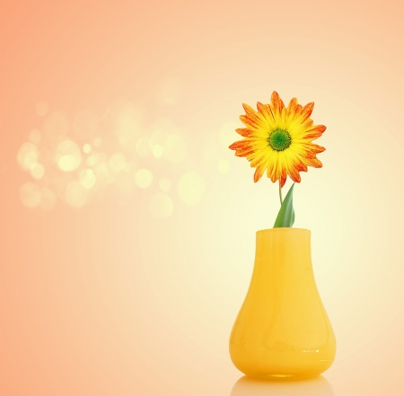 yellow flowers in vase photo