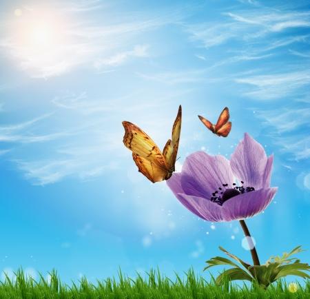 twee vlinder op bloemen - lentebloemen Stockfoto