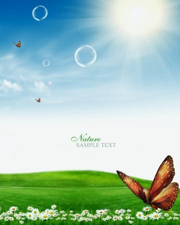 mooie lentedag met bloemen en vlinders