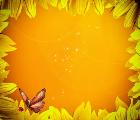 golden background sunflower petals photo