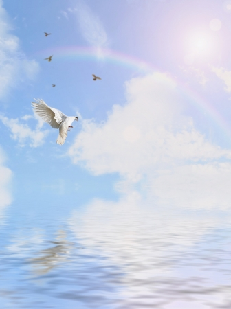 high spirits: dove flying on sky background Stock Photo
