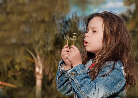 beautiful little girl blowing dandelion photo