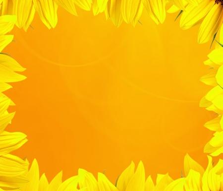 gouden achtergrond zonnebloembloemblaadjes Stockfoto