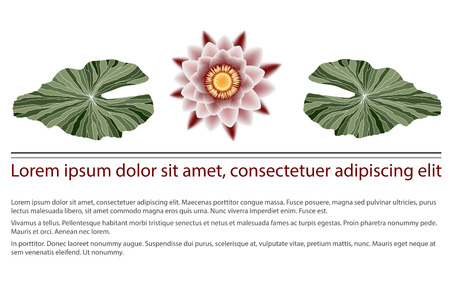 nirvana: Pink lotus flower with contour green leaves, document heading Illustration