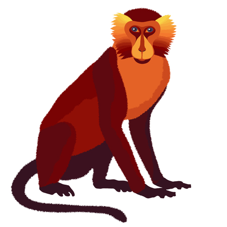 augury: Vector fire monkey, symbol of New Year 2016, astrological Chinese horoscope