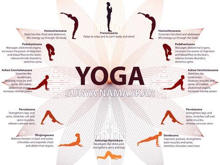 armonia: infografía yoga, la secuencia de Surya Namaskar, saludo al Sol, los beneficios de la práctica
