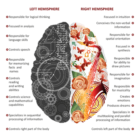 Brain left analytical and right creative hemispheres infographics vector illustration