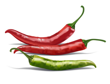 Realistic red and green chili pepper isolated on white vector illustration