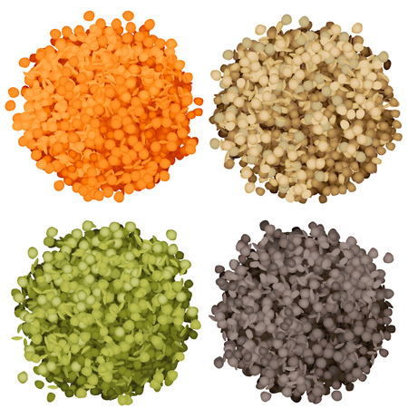Various types of lentils piles set vector illustration. Green, black, brown and red lentils 向量圖像
