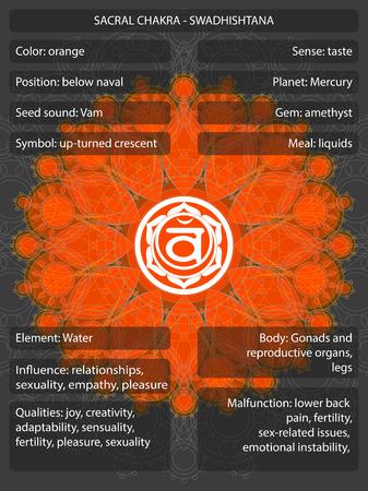 Simboli di Chakra con significati infografici
