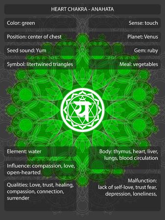 Símbolos de chakras com significados infográfico