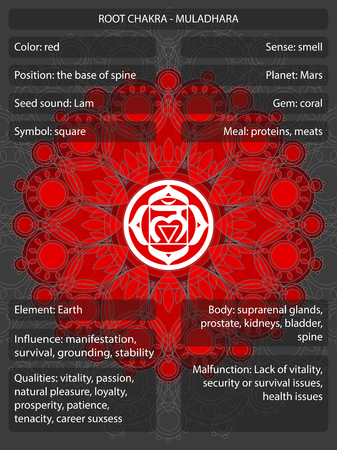 chakras symboles avec infographie infographie illustration vectorielle Vecteurs