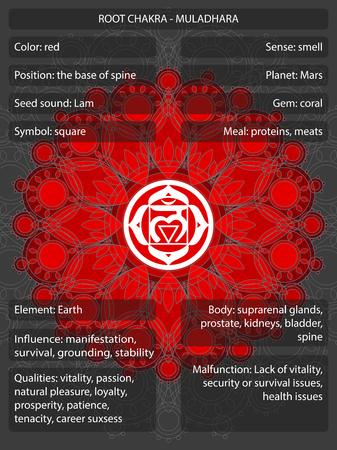 Simboli di Chakras con l'illustrazione infographic di vettore di significati