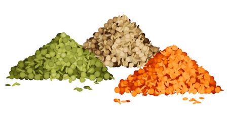 Différents types de piles de lentilles définies vue de côté illustration vectorielle. Lentilles vertes, brunes et rouges