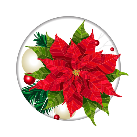Poinsettia Christmas and New Year beautiful winter floral greeting card