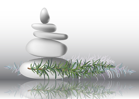 Foglie di erbe di rosmarino con illustrazione vettoriale di pietre bianche. Per spa e aromaterapia