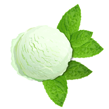 Mint green ice cream with mint leaves isolated on white background, top view realistic vector illustration