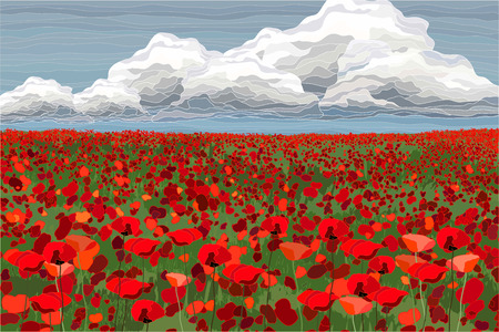 Bright poppy field with cloudy dky, vector illustration realistic landscape