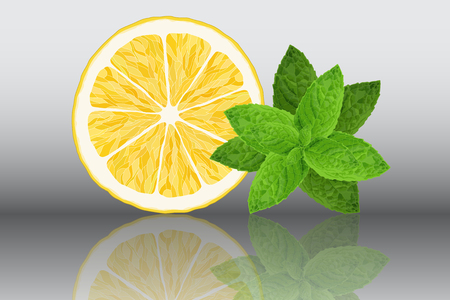 Lemon and mint reslistic vector illustration on grey background with reflection