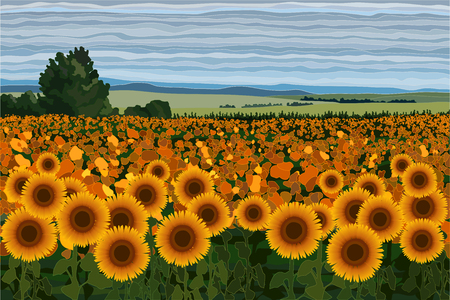 Bright field of sunflowers with bushes, trees and blue sky vector illustration realistic landscape