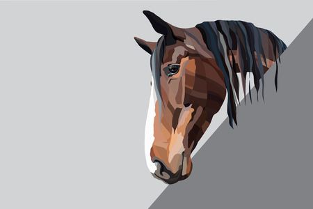 Brown horse head on a grey background realistic vector illustration Illustration