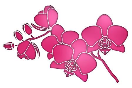Paper cut purple silhouette orchids vector illustration