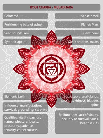 Chakras symbols with description of meanings infographic