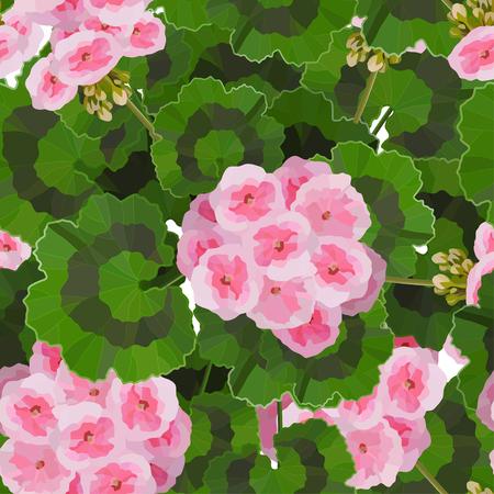 Salmon pink pelargonium flowers vector illustration. Garden or interior decoration seamless pattern Illustration