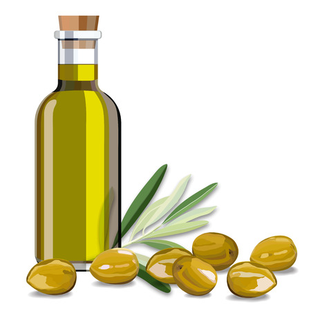 Olive oil and olive branch on the white background vector illustration Çizim