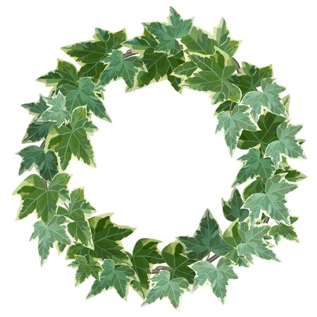 Green wreath made of common ivy with copy space