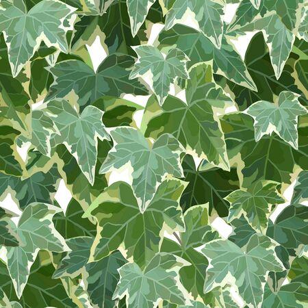 Common ivy green seamless pattern vector illustration