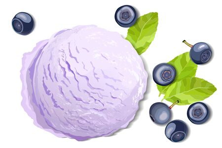 Violet ice cream with blueberry leaves and berries isolated on white background, top view vector illustration