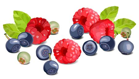 Blueberry and raspberry on a white background, leaves and berries