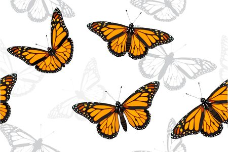Monarch butterfly set seamless vector pattern illustration