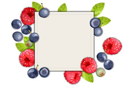 Blueberry and raspberry on a white background, leaves and berries frame