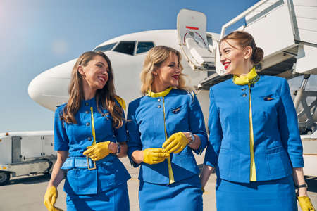 Pleased stewardesses smiling at each other outdoors Imagens