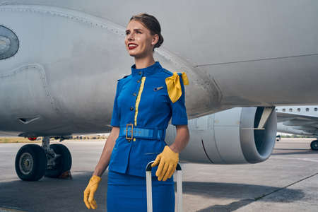 Joyous stewardess with baggage standing by a plane