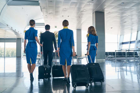 Stylish airline employees walking with their baggage