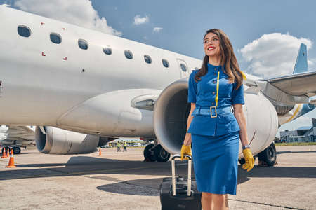 Cheerful female flight attendant with her baggage