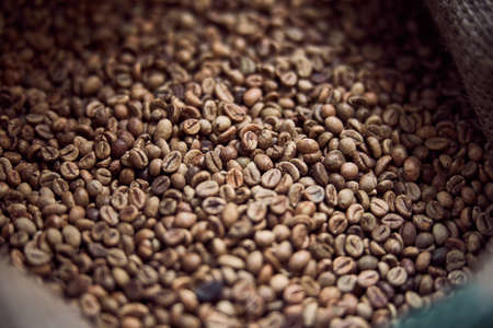Roasted coffee beans stored in burlap sack