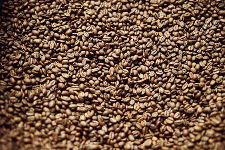 High quality freshly roasted arabica coffee beans