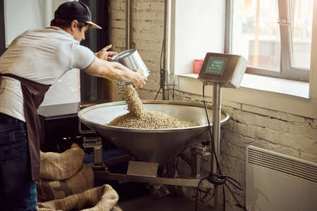 Male worker weighing coffee beans at factory